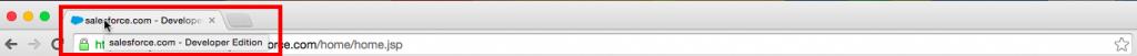 Chrome Developer Edition